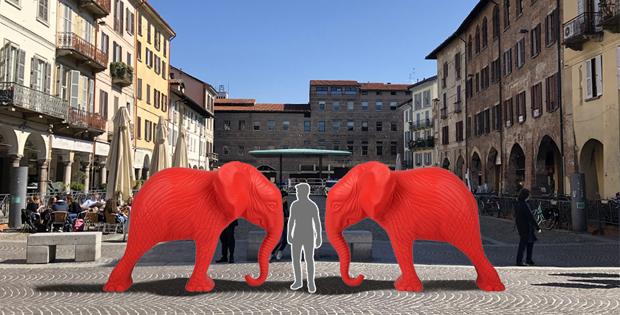 Due elefanti in città