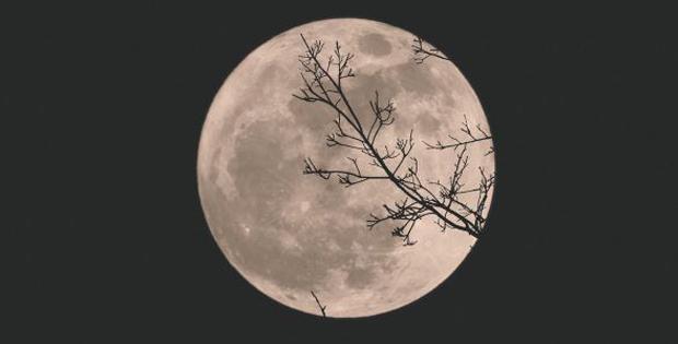 Andare per sentieri al chiaro di luna / Moonwalk sonata
