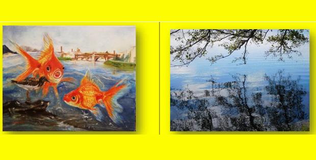 Esposizione di dipinti e fotografie a Pavia