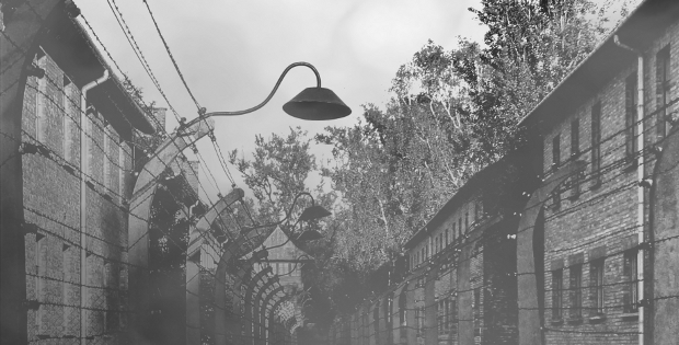 Di Notti e di Nebbie. Una videoinstallazione a cura di Roberto Figazzolo