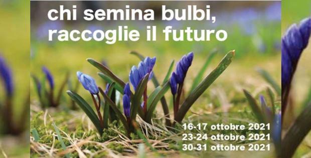 Chi semina bulbi raccoglie il futuro